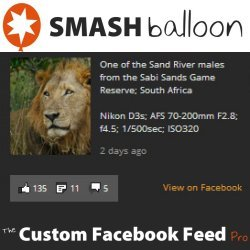 Smash Balloon